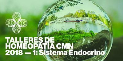 taller-homeopatia-barcelona-sistema-endocrino